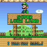 Super Luigi Land