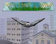 Jogo Simulador – Voar como um Pássaro Online Gratis