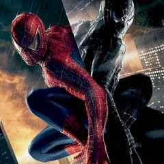 Spider Man Warrior 3D