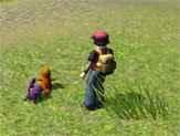 Jogo Pokémon 3D Online Gratis