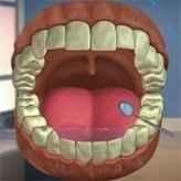 Glenn Martin Dental Adventure