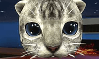Simulador 3D de Gato