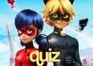 Quiz Miraculous: Você é a Ladybug ou o Cat Noir?