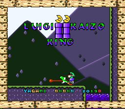 LUIGI KAIZO KING