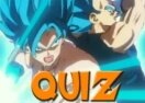 Quiz Dragon Ball Super: Você é o Goku ou o Vegeta?