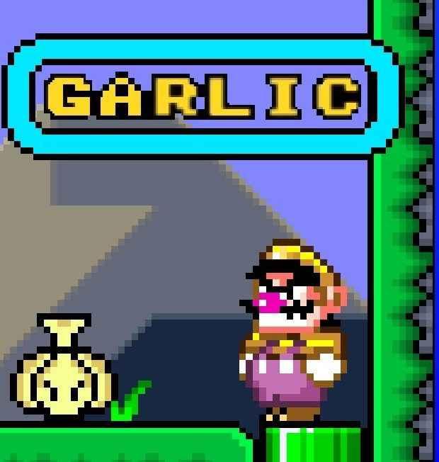 GARLIC – Super Mario World Hacks