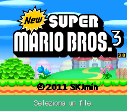 New Super Mario Bros 3 DS