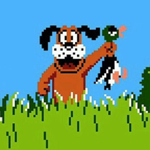 Duck Hunt (World)